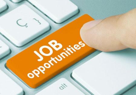 بیش از ۵۰۰۰۰۰ موقعیت شغلی جدید در سه ماهه اول ۲۰۱۹