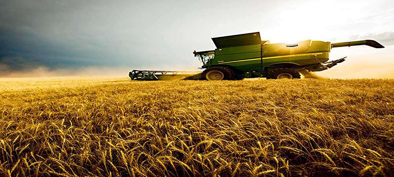 معرفی رشته مهندسی کشاورزی و تحصیل در کشور کانادا
