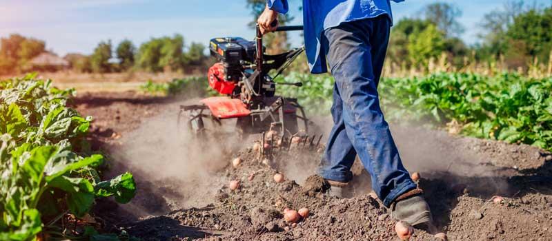 رشته کشاورزی در کشور استرالیا