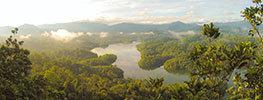 استرالیا سرزمین جنگل های استوایی