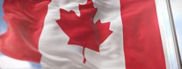 با مشاغل پر درآمد کانادا آشنا شوید