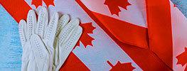 اخذ ویزای کاری کانادا سخت اما ممکن!